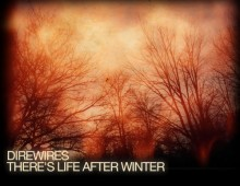 Direwires – There's Life After Winter