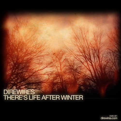 Direwires - There's Life After Winter